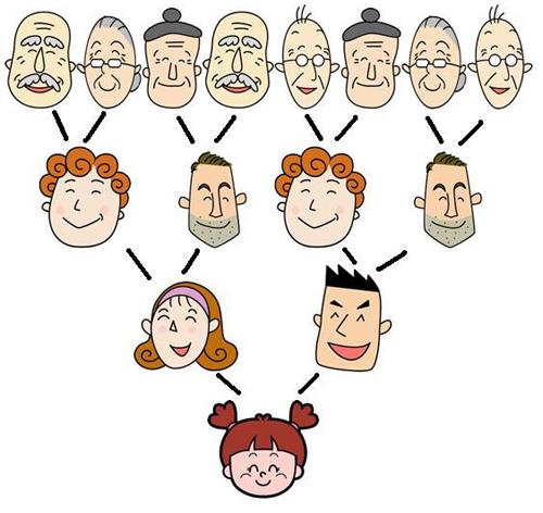 在传统的421家庭模式
